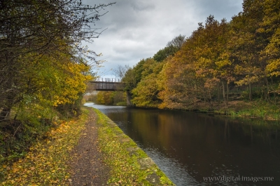 Autumn on the Canal II